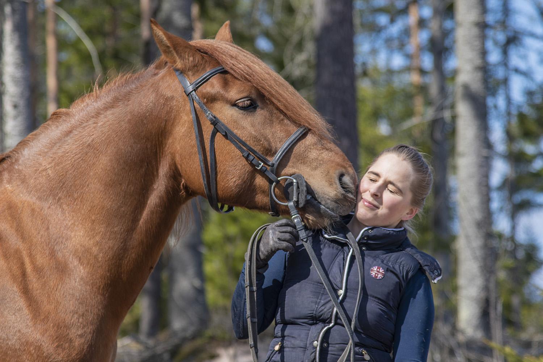 lemmikkikuvaus hevoskuvaus