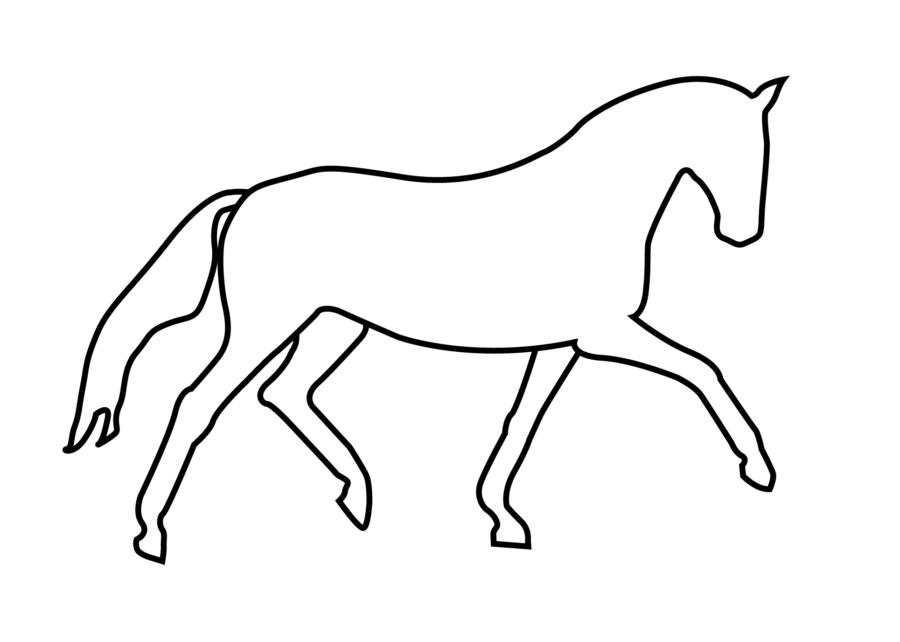 line drawing viivapiirros digitaalinenpiirros